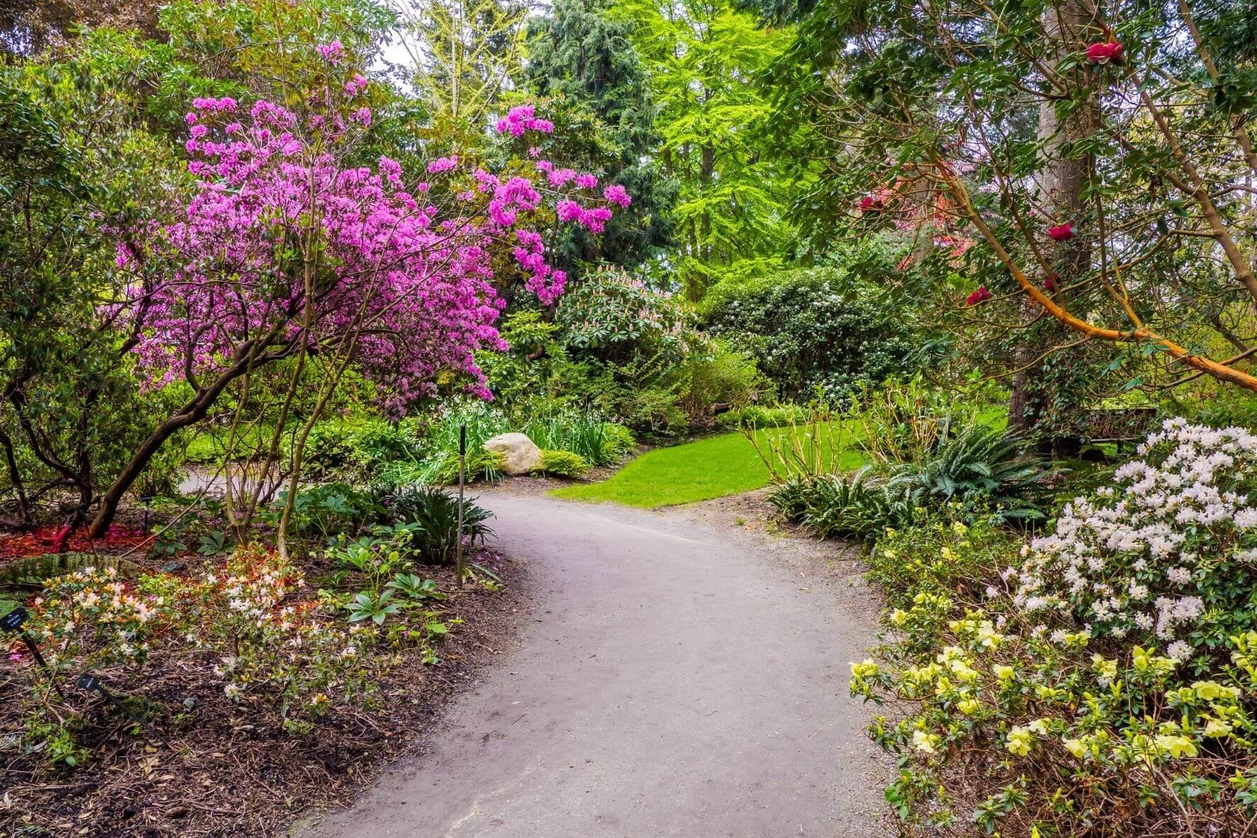 Rhododendronstadt Westerstede